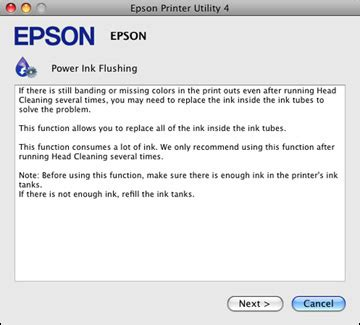 Flushing the Ink Tubes Using a Computer Utility