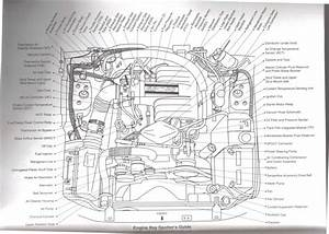 1965 Mustang Gt Wiring Diagram