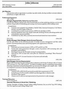 Professional Resume Sample Free Sample Curriculum Vitae Professional Resume Samples Choose Call Center Professional Resume Writers Best Resume Example Professional Resume Samples 9 Free Word PDF Documents
