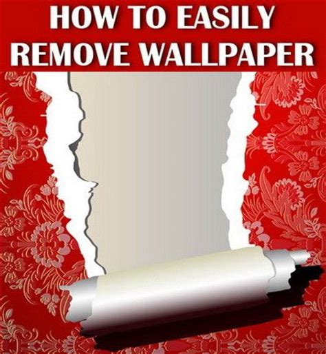 best 20 remove wallpaper ideas on removing wallpaper how to remove wallpaper and
