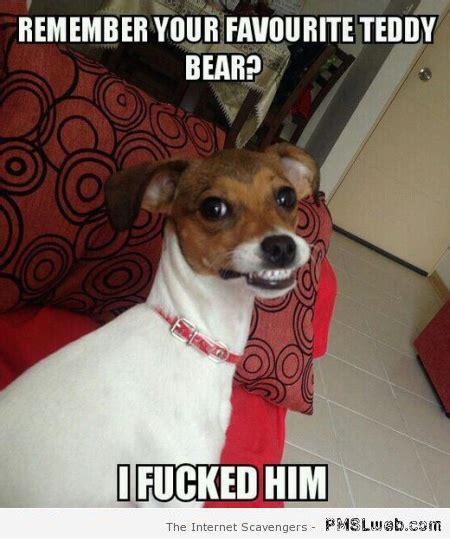 Teddy Meme - remember your favorite teddy bear meme pmslweb