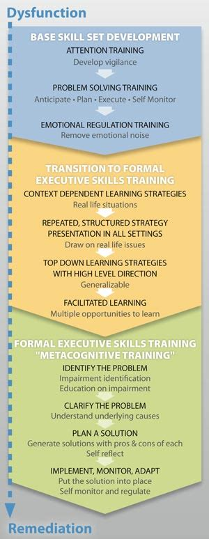 executive functioning    controlled