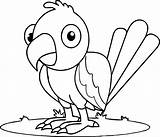Parrot Coloring Pages Fish Baby Printable Simple Getcolorings Print sketch template