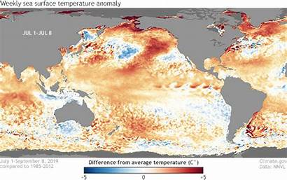 Enso Climate Nino El September Noaa Neutral