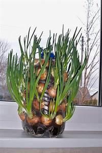 diy vertical planter the owner builder network