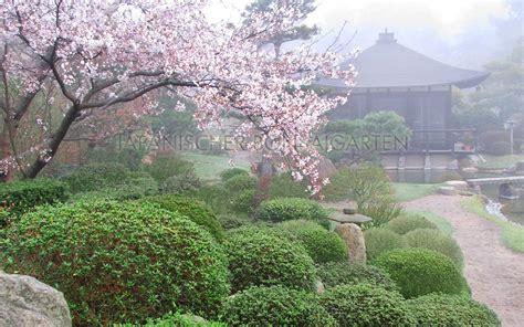 Japanischer Garten Havelland by Japanischer Bonsaigarten In Ferch Am Schwielowsee