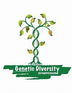 Graduate Students At Cimmyt Organize Genetic Diversity Symposium  U00bb Seeds Of Discovery
