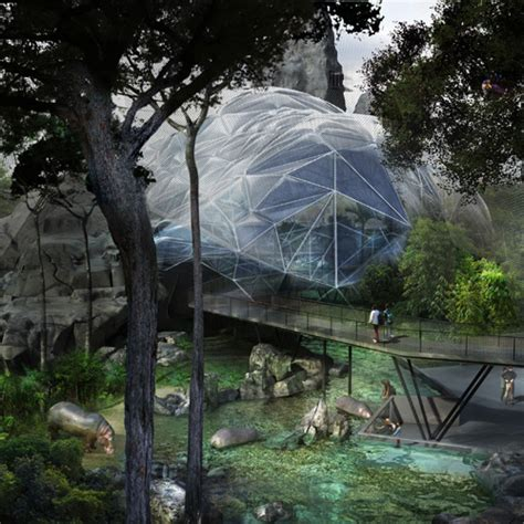 Zoo De Vincennes Renovation  The Expanded Environment