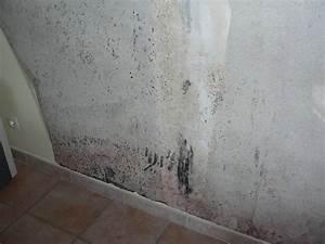Humidité Mur Extérieur : techniques d 39 limination de l 39 humidit bricobistro ~ Premium-room.com Idées de Décoration