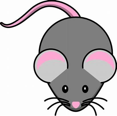 Mouse Pink Grey Clip Clipart Clker