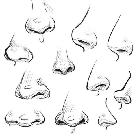 pin  ryleigh  art reference   nose drawing