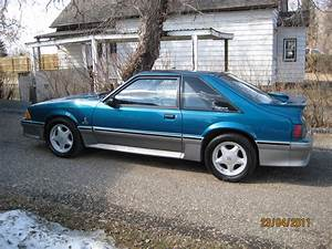 1993 Mustang Gt  Finally Found The One