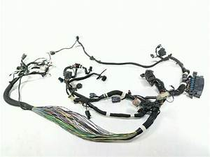 17 Indian Roadmaster Chief Main Wiring Wire Harness Loom