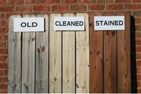 painting  staining fences expert tips