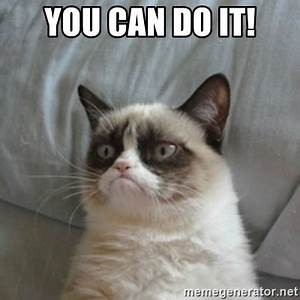YOU CAN DO IT! - Grumpy Cat ={ | Meme Generator