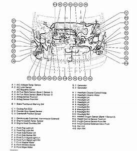 2004 Lexus Es330 Vacuum Diagram  Lexus  Auto Wiring Diagram