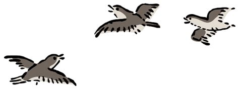 Clipart Of Birds Flying