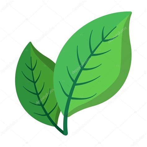 dibujos dibujo hoja verde dos hojas de color verde de dibujos animados icono vector de