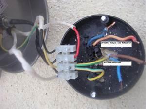 Branchement Detecteur De Mouvement : branchement lampe avec detecteur ~ Dailycaller-alerts.com Idées de Décoration
