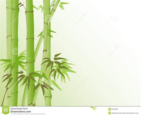 background  bamboo pattern stock vector image