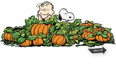 Pumpkin Patch Clipart Brown Pumpkin Patch Clip Cyberuse
