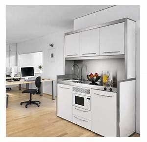 Cuisine Studio Ikea : petite cuisine pour studio les cuisines astucieuses ~ Melissatoandfro.com Idées de Décoration