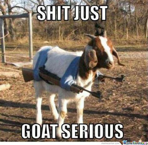 Funny Goat Memes - becoming amish page 2 babycenter