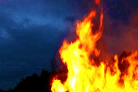 Offenes Feuer Im Wald Verboten