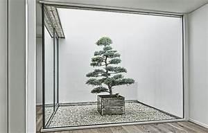 Bonsai Im Glas : atrium interior greening planting behind glass ~ Eleganceandgraceweddings.com Haus und Dekorationen