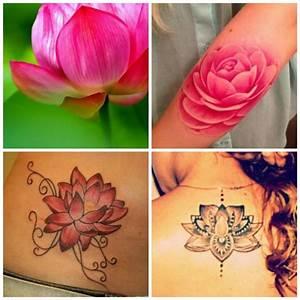 Fleur Lotus Tatouage : tatouage fleur de lotus signification et mod les ~ Mglfilm.com Idées de Décoration