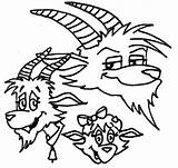 Coloring Pages Goat Billy Brothers Three sketch template