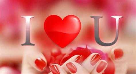 hd  love  images pictures wallpapers
