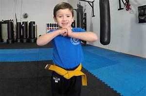 Martial Arts School for Men & Women Hallam, Endeavour ...