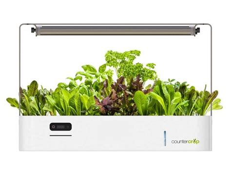 kitchen grow lights plant your kitchen garden in your kitchen with this 1785