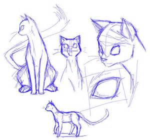 cat sketches 25 great ideas about cat drawing on