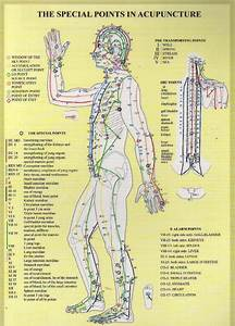 Special Points Of Acupuncture Chart