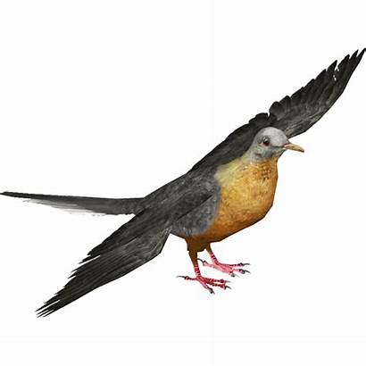 Pigeon Passenger Fandom Wiki