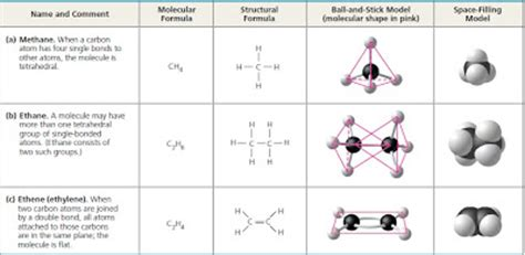 carbon atoms can form diverse molecules by bonding to four other atoms yoan x7