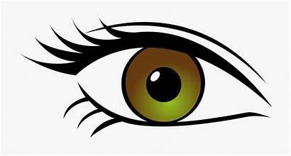 Eye Clipart Transparent Eyes Brown Olho Desenho