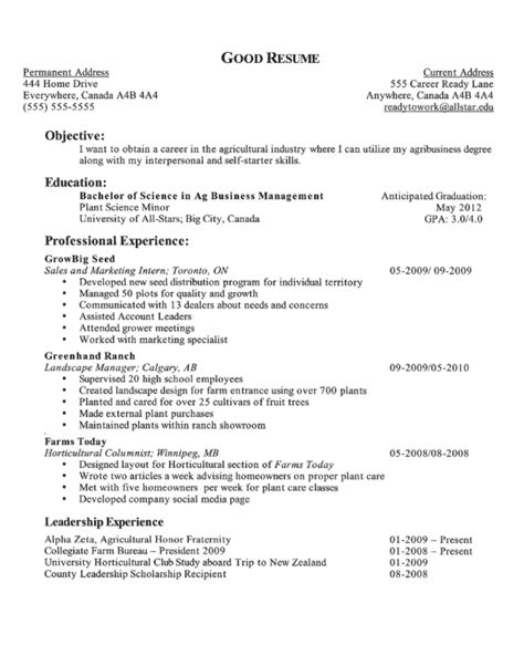 resume exles templates exles of objectives for