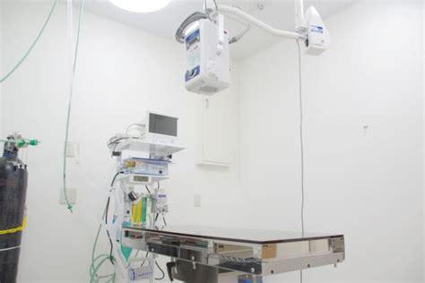 ブルーム 動物 病院