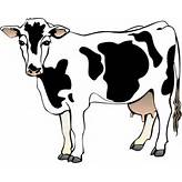 Cow 11 Clip Art at Clker.com - vector clip art online, royalty free ...