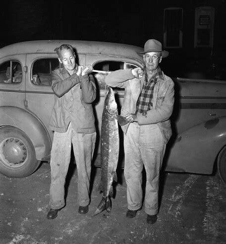 vintage fishing michigan sturgeon shot vintage fishing