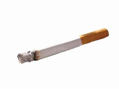 Cigarette Background Transparent Cigar Blunt Clipart Picsart