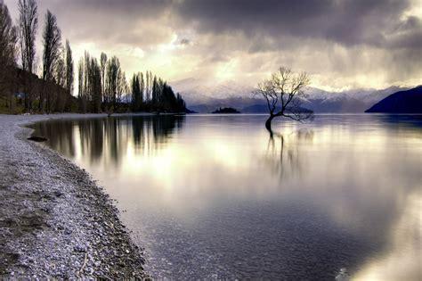 Lake Wanaka - The Alone Tree, New Zealand