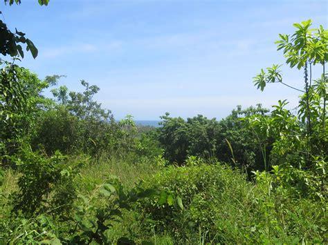 ocean  jungle views  unawatuna lanka real estate