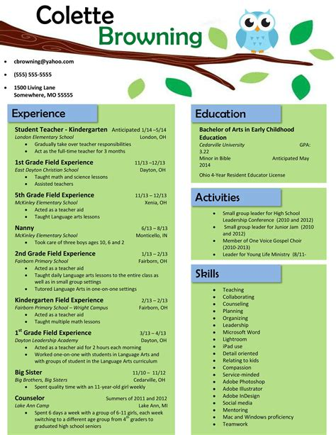 Teachers Resume Template by Owl Teaching Resume Buy The Template For Just 15