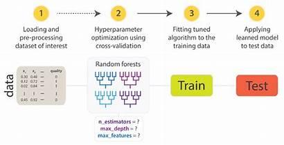Learning Machine Validation Test Algorithm Understand Train