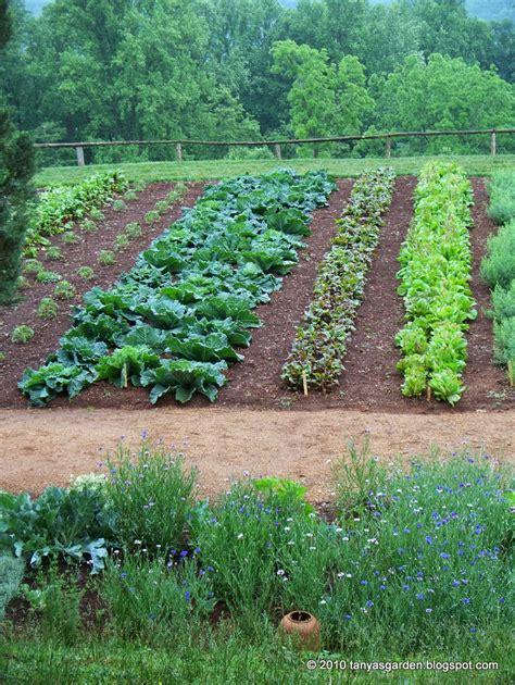 Mysecretgarden Colonial Gardens Part 42 Monticello