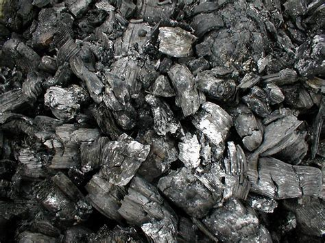 how to use charcoal charcoal it s not just for grilling
